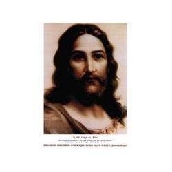 Poster Le Vrai Visage de Jésus