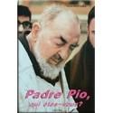 Padre Pio, qui êtes-vous ?